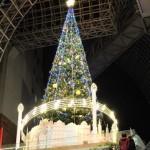 京都駅大階段のツリー